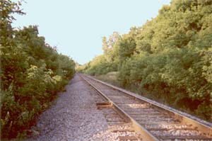 Tracks at Site of Attempted Kasota Hold Up